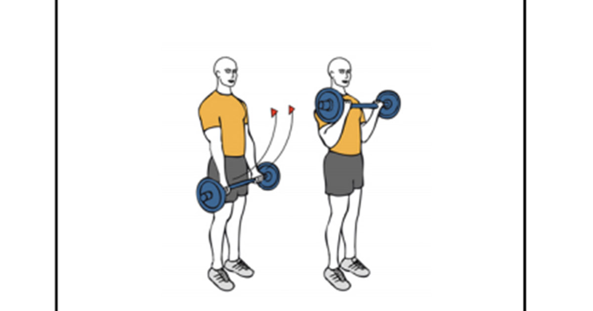 curl biceps con barra